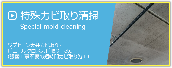 特殊カビ取り清掃