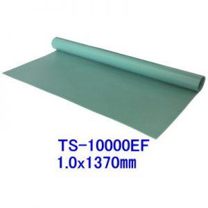 TS-10000EF
